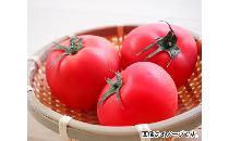 トマト 3個 【生鮮野菜】