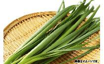 ニラ 100g 【生鮮野菜】