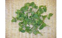 【生鮮野菜】 スペアミント 1パック