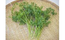 【生鮮野菜】 セルフィーユ 1パック