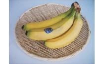 バナナ 5本 【生鮮野菜】