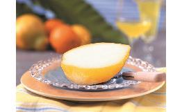 皮付・レモンシャーベット 1個