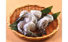 ブラックタイガー尾付むきエビ(バックカット)(13/15相当) 500g