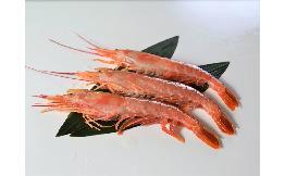 天然赤海老(有頭殻付)L1サイズ 2kg