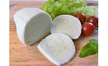 冷凍モッツァレラ・ブッファラ(水牛) 1個