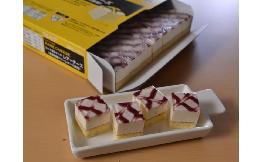 ミニカットケーキ レアーチーズ 1台