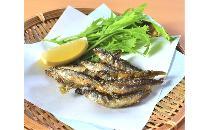 【琵琶湖産】ほろにが小鮎の唐揚げ 1kg