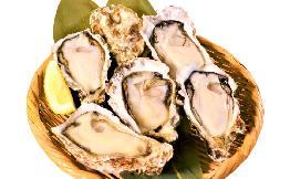 【広島産】片貝殻付きかき 10個