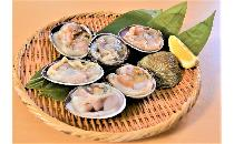 片貝大あさり(ウチムラサキ貝) 1kg