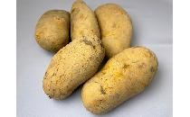 メークイーン 1kg 【生鮮野菜】