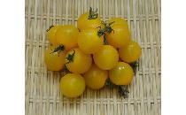 【生鮮野菜】 黄プチトマト 200g