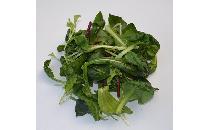 ベビーリーフ 50g 【生鮮野菜】