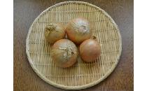 【生鮮野菜】 輸入玉ねぎ 1kg
