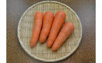 【生鮮野菜】 中国産ニンジン 1kg