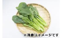 小松菜 約 200g